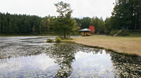 じゅんさい沼キャンプ場